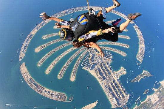 skydive-in-dubai-see.jpg